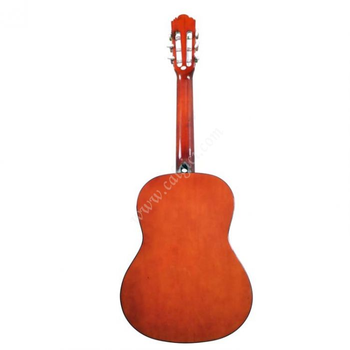 Gitar Klasik Arenas AC480N